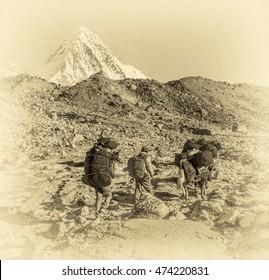 Yaks caravan on the trek at the foot of Mount Everest (8848 m) near Gorak Shep village - Nepal, Himalayas (stylized retro)