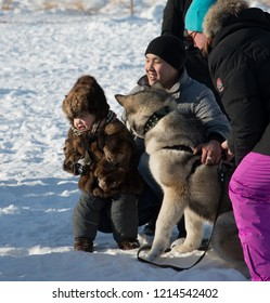Yakutsk, Republic of Sakha (Yakutia)/Russia-March 20 2016: Happy Yakut family with Malamute dog on Festival of dog sledding competitions. Baby in sable fur clothes