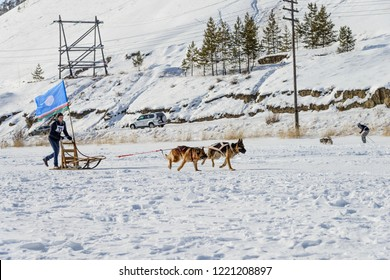 Yakutsk, Republic of Sakha (Yakutia)/Russia-March 20 2016: a man holding the flag of Yakutia in competitions in sled dog sledding