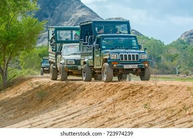 YALA, SRI LANKA – AUGUST 24: Tourists are watching wild animals from safari jeeps in Yala National Park on August 24 2017 in Yala, Sri Lanka