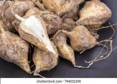Yam Bean or Jicama - scientific name is Pachyrhizus erosus (L.) Urb.
