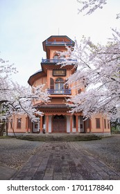 Yamagata / Japan - Apr 18,2018 : The former Saiseikan Hospital (or Yamagata Kyodokan) with full blooming cherry blossom trees in Kajo Park on site of former Yamagata castle ,Yamagata , Japan.