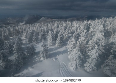 YAMAGATA-JAPAN-FEBRUARY 2 : View of Iec monster at Zao mountain in Yamagata town on winter, February 2 , 2019 Yamagata Province, Japan