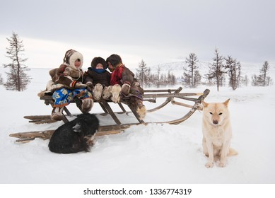 Yamal, Russia - March 05, 2019: Children of Nenets nationality play on a sleigh with dog. Nomad Nenets people live in yurts, migrate with reindeer in tundra around Arctic circle.