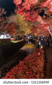 "YAMANASHI, JAPAN - NOVEMBER 12, 2018: Light up at maple corridor in ""Fujikawaguchiko Autumn Leaves Momiji Festival"" event at Kawaguchiko, Yamanashi, Japan"