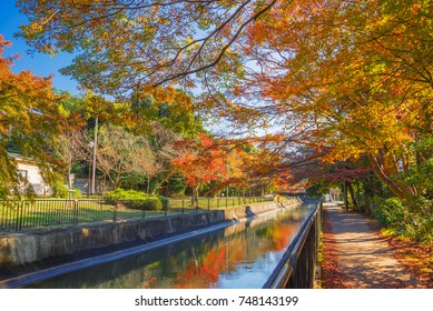 Yamashina Canal at Yamashina ward, Kyoto, Japan, in autumn. The canal is Yamashina part of Lake Biwa Canal.