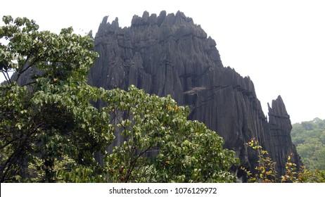 Yana Rocks (Bhairaveshwara Shikhara) near Yana Village, Kumta, Uttara Kannada district of Karnataka, India. This huge monolith black rock is surrounded by thick beautiful forests and streams.