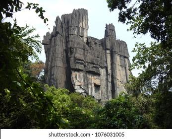 Yana Rocks (Mohini Shikhara) near Yana Village, Kumta, Uttara Kannada district of Karnataka, India. This huge monolith black rock is surrounded by thick beautiful forests and streams.