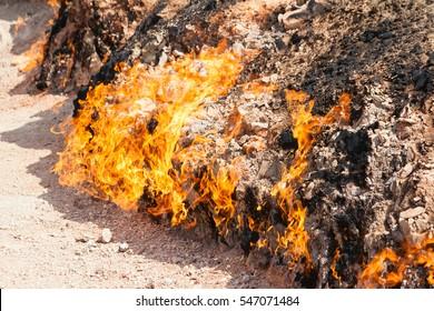 Yanar Dag - burning mountain. Azerbaijan. closeup
