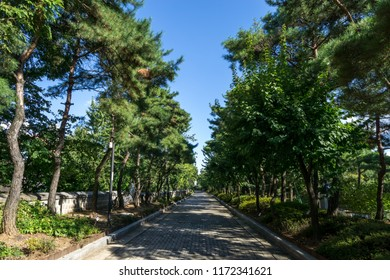 yanghwajin foreign missionary cemetery scenery in hapjeong, seoul, south korea