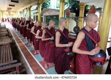 Yangon , Myanmar - July 30,2016 : Myanmar monk in Temple