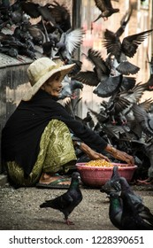Yangon, Myanmar - Nov 01 2018: Old woman feeding pigeons on the Yangon street