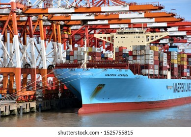 Yangshan, Shanghai / China - September 24 2019: Maersk Line container ship in the port of Yangshan, under the gantry cranes during cargo operation.
