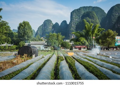 YANGSHUO, CHINA - MAY 26, 2018: Scenic summer sunny landscape at Yangshuo County of Guilin, China.