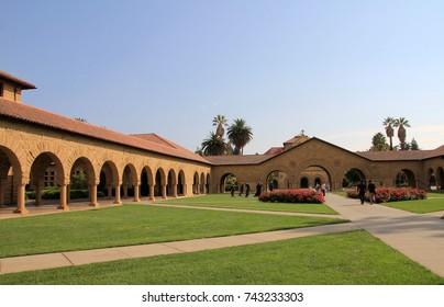 Yard of Stanford university in USA