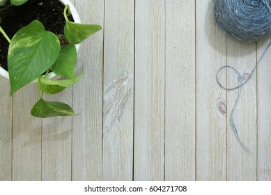 Yarn, thread and other knitting and sewing or craft items on a pale slatted wood surface or desk from a top down ariel view perspective and a potted house plant vine in the corner.