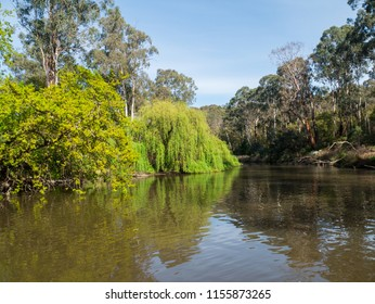 The Yarra River flowing through Warrandyte in the City of Manningham in Melbourne, Australia