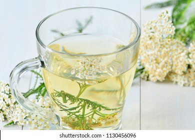 Yarrow medicinal tea in glass mug and yarrow flowers over light blue wooden table (Achillea millefolium) closeup