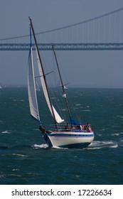 Yatch sailing on San Francisco bay in sunny sumer day.