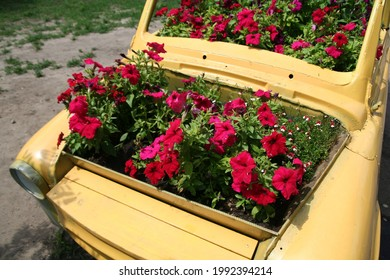 Yeallow old car as a flowerbed in the city park