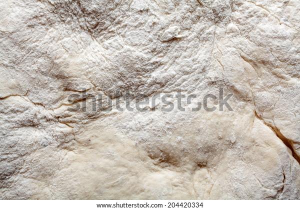 Yeast dough texture. Macro image.