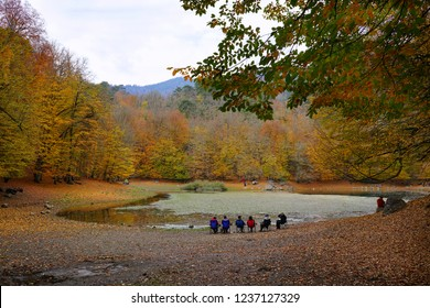 Yedigoller, Bolu/Turkey-November 10, 2018: Yedigoller offers amazing colors and place for campers and hikers in November at Bolu, Turkey