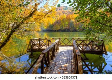Yedigoller National Park, Bolu -  Autumn landscape in seven lakes