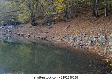 Yedigoller (Seven Lakes) National Park in Turkey, autumn leaves and tree shades in the lake surface.