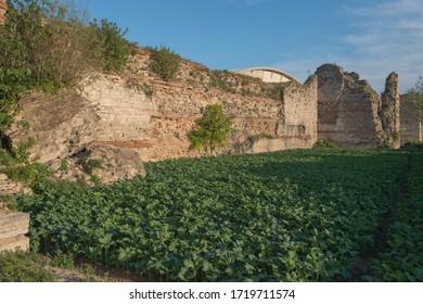 Yedikule Walls and Gardens Fatih