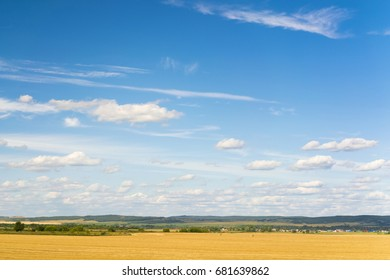 Yellow agricultural field under a blue sky with clouds