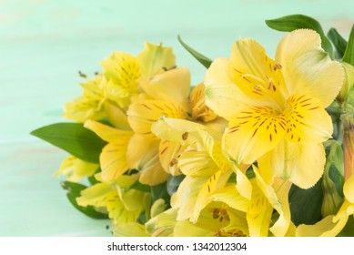 Yellow Alstroemeria on green wooden background