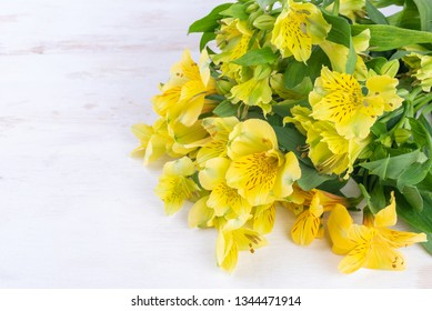 Yellow Alstroemeria on white wooden background