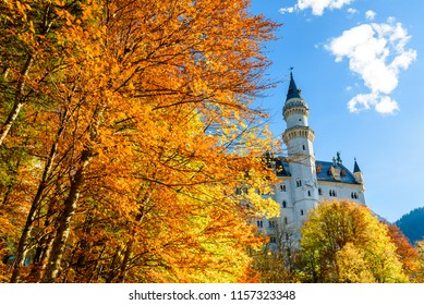 Yellow autumn foliage on the background of the Neuschwanstein Castle. Neuschwanstein Castle on the background of the blue sky. Autumn landscape in Bavaria. The most popular castle in the world.
