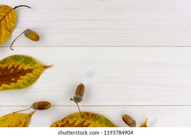 yellow autumn leaves and acorn on a white wooden table