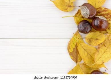 yellow autumn leaves and chestnut on a white wood table
