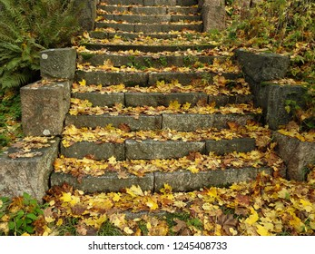 Yellow autumn leaves on stone stairs