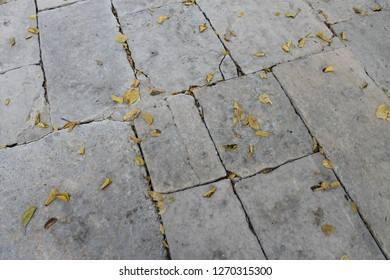 Yellow autumn leaves on the stone tiles of the pavement at the Temple Mount by the Dome of the Rock in the Old City of Jerusalem