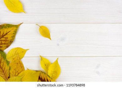 yellow autumn leaves on a white wooden table