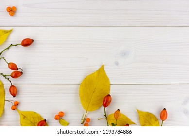 yellow autumn leaves and rose hips on a white wooden table