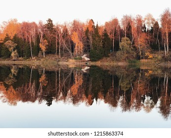 Yellow autumn on Istra lake in Russia
