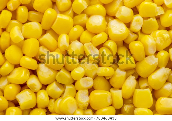 Yellow background of grains of canned corn. Pattern of corn kernels. Textured. Close-up.