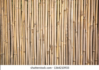 yellow bamboo wall background, traditional homemade fence
