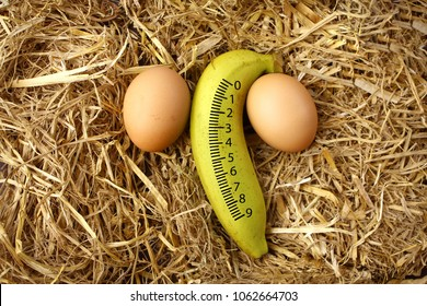 yellow banana with 2 eggs.placed on dry grass.Numbers 1-9. Symbols to the penis or male organs. concept:  Penis size and nourishment and health.Penis measure, man power and potency,