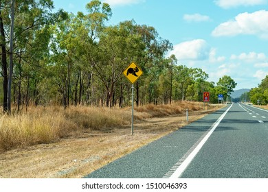 A yellow and black highway road sign warning that koalas cross the road
