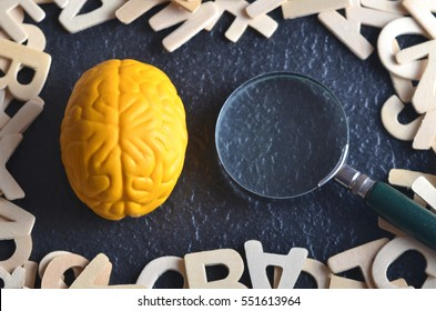 Yellow brain replica, magnifying glass and wooden alphabet