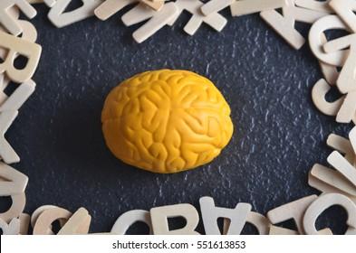 Yellow brain replica and wooden alphabet