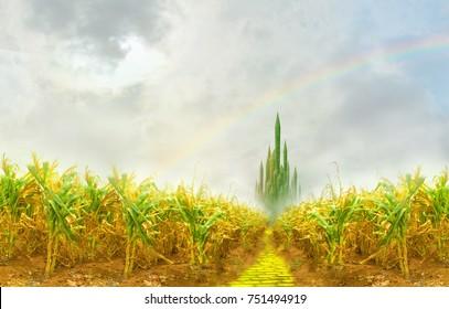yellow brick road to emerald city through cornfield