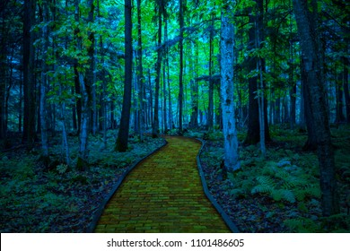 The Yellow Brick Road through a dark scary woods