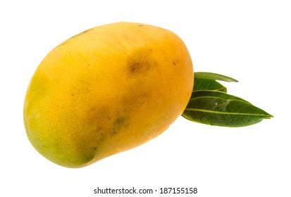 Yellow bright mango isolated on white