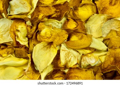 yellow and brown rose petals as a background